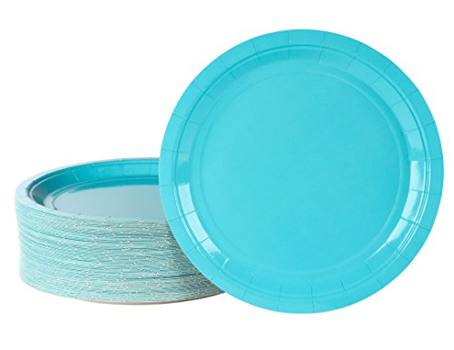 Disposable Plates - 80-Pack Paper Plates Party Supplies for Appetizer, Lunch, Dinner, and Dessert, Turquoise, 9 x 9 Inches