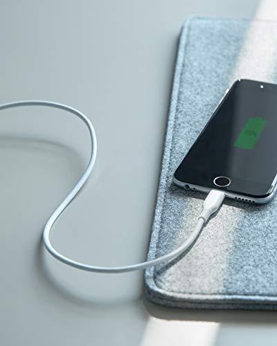 Cargador para iPhone, Anker Powerline Lightning (3 pies), Apple MFi Certified, Cable Lightning Duradero de Alta Velocidad /Cargador, iPhone Xs /XS Max /XR /X /8/8 Plus /7/7 Plus /iPad, y más ( Blanco)