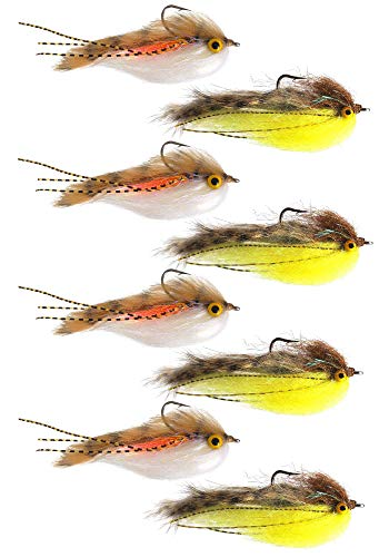The Fly Crate Lunchable Streamer Assortment | Fly Fishing for Trout Bass Pike | Size 2 (8 Pack) (Fishing Trout Fly Bass)