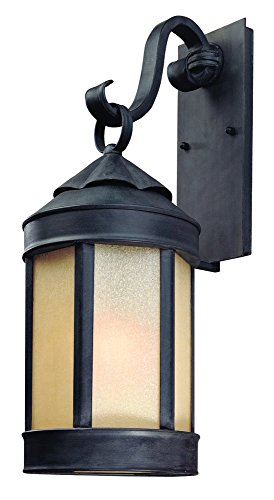 Troy Lighting Andersons Forge 24