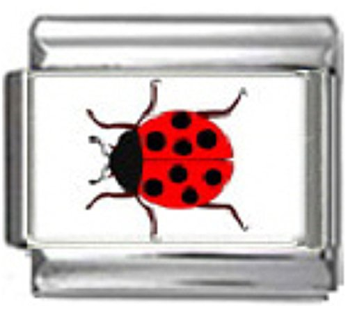 Stylysh Charms Ladybug RED Insect Photo Italian 9mm Link AN043