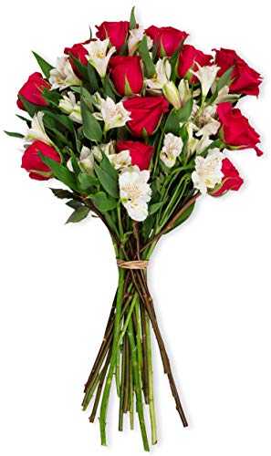 (Benchmark Bouquets Signature Roses and Alstroemeria, No Vase (Fresh Cut Flowers))
