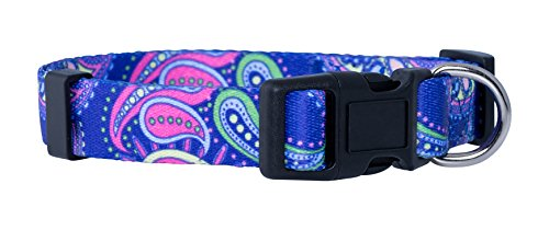Native Pup Flower Dog Collar/Paisley Dog Collar (Large, Purple Paisley)