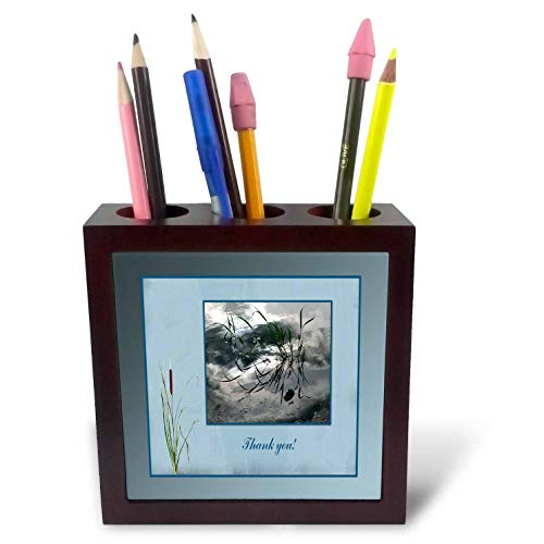 3dRose Beverly Turner Thank You Design - Thank You, Frog in a Pond Photo, Cattails Accent, Blue Frame - 5 inch Tile Pen Holder (ph_286999_1)