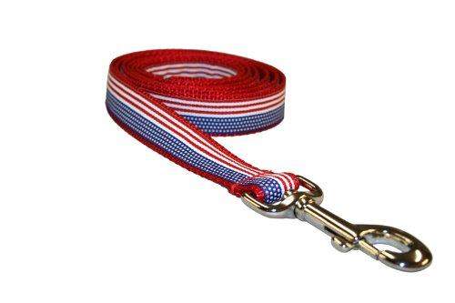 Sassy Dog Wear 4-Feet American Flag Dog Leash, Small