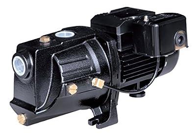 Acquaer SJC075 Acquaer 3/4 hp Dual-Voltage Cast Iron Shallow Well Jet Pump, Black