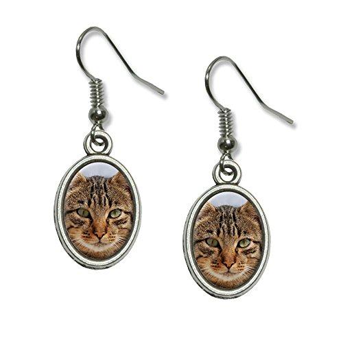 Brown Tabby Cat Face Novelty Dangling Drop Oval Charm Earrings