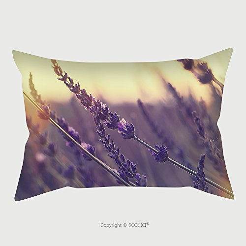 Custom Satin Pillowcase Protector Lavender Field At Summer Sunset Close Up Of Lavender Flower Over Blurred Background Soft And 374396536 Pillow Case Covers Decorative by chaoran