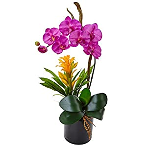 Nearly Natural Orchid and Bromeliad Silk Arrangement, 31