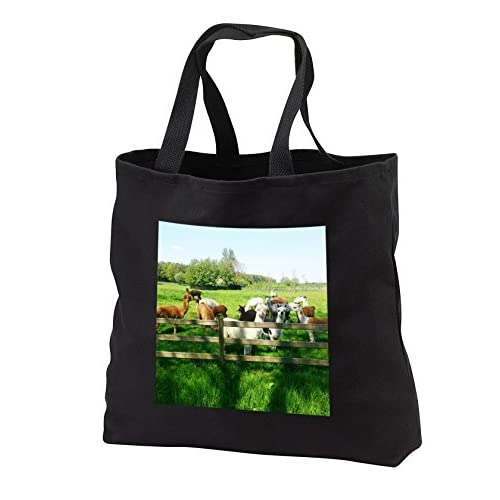 3dRose RinaPiro - Domestic Animals - Alpaca. Lama. South America. Farm. - Tote Bags