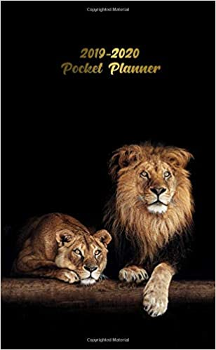 2019-2020 Pocket Planner: Nifty African Lion & Lioness Two ...