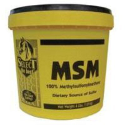 Msm Powder Joint Support For Horses by Select The Best