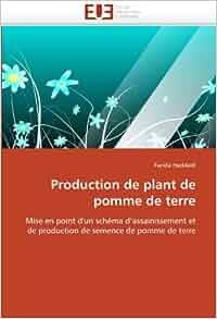 Production de plant de pomme de terre: Mise en point d'un schéma d