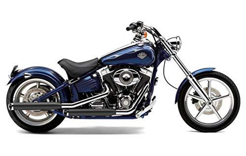 - Cobra 00-06 Harley FXST2 Slip-On Exhaust (Black / 3