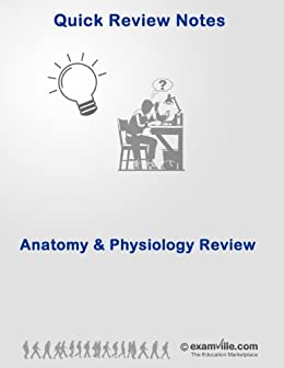 Physiology Quick Review: Renal System Review for College, Nursing and Medical Students