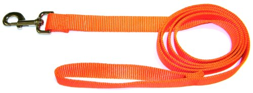 (Hamilton Single Thick Nylon Lead with Snap -1 inch x 6 foot lead - Mango Orange )
