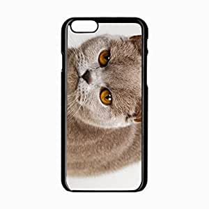 iPhone 6 Black Hardshell Case 4.7inch kitten eyes Desin Images Protector Back Cover