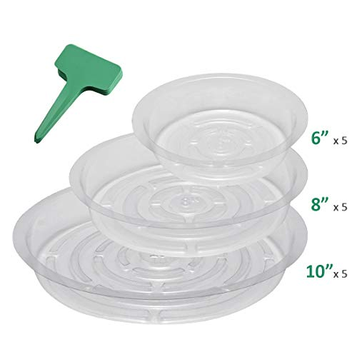 GROWNEER 15-Pack Clear Plant Saucer Drip Trays, w/ 15 Pcs Plant Labels, Plastic Plant Pot Saucers Flower Pot Set for Indoor Outdoor Garden, Assorted Sizes - 6/8/10 Inch, 5 Pcs of Each Size