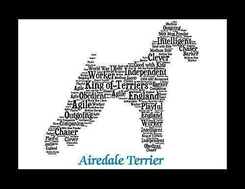 (Airedale Terrier Dog Wall Art Print - Personalized Pet Name - Gift for Her or Him - 11x14 matted - Ships 1 Day)