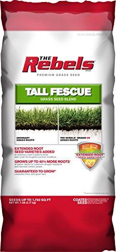 Pennington Rebel Tall Fescue Mixture Powder Coated Seed, 7 lb.