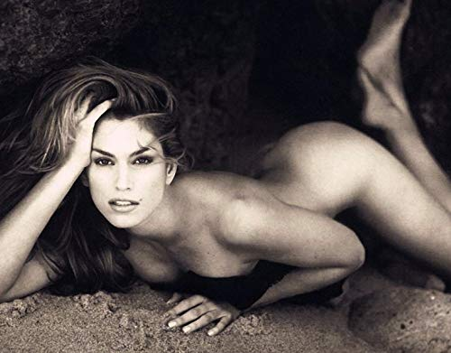 photo Cindy Crawford 8 x 10 Glossy Picture Image #3 (Cindy Crawford Photos)