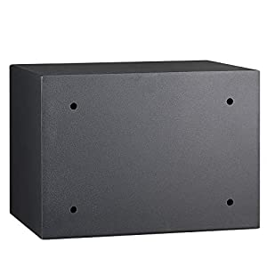 AmazonBasics Biometric Fingerprint Home Safe, 0.5 Cubic Feet
