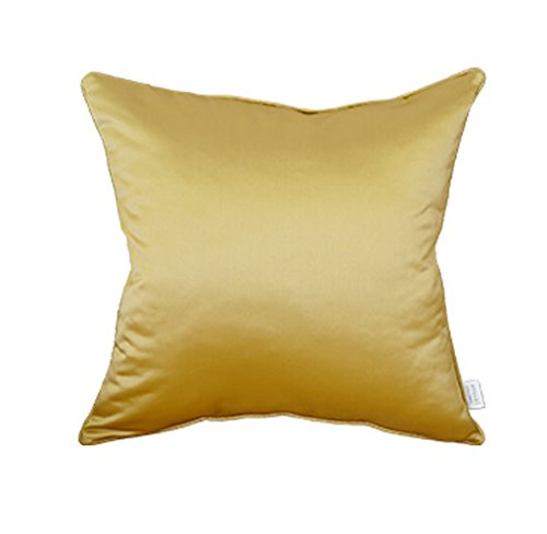 Taste Life 50cm50cm ZfgG Dossier Simple de lit d'oreiller de Sofa Moderne de Coussin, siège de Sofa de série d'or, Oreiller démontable et Lavable avec Le Noyau sur Le Sac (Couleur   Taste Life, Taille   50cm50cm)