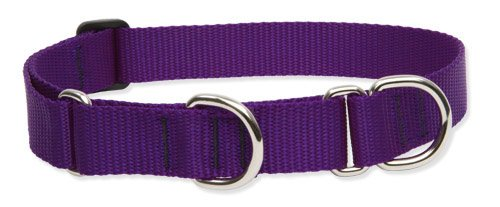"""LupinePet Basics 1"""" Purple 15-22"""" Martingale Collar for Medium and Larger Dogs"""