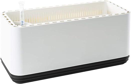 Airy Box - innovadora Maceta purificadora de Aire 100% eficaz ...