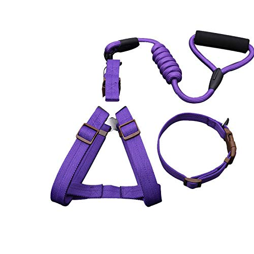 Purple three-piece S Purple three-piece S YSDTLX Dog Chain Dog Leash Chest Strap With Hyena Rope In Large Dog Pet Supplies Purple Three-Piece Suit S