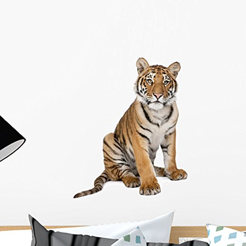 Wallmonkeys Portrait of Bengal Tiger Wall Decal Peel and Stick Graphic WM321373 (18 in H x 18 in -