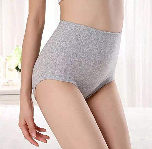 603a51a14eb smart sisi 5-Pack Womens Plus-Size High Waist Cotton Briefs Underwear