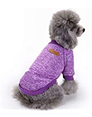 Cute Knitwear Sweater European Classical Pet Sweater Turtleneck Dog Sweater for Small Dogs