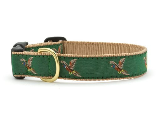 Pheasant Dog Collar with Quick Release Buckle - Medium (12-18 Inches) - 1 In Width by Up Country