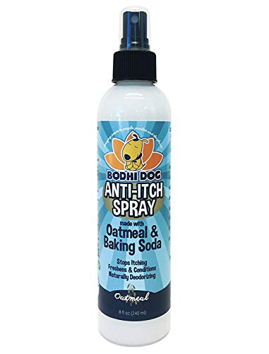 New Anti Itch Oatmeal Spray for Dogs and Cats | 100% All Natural Hypoallergenic Soothing Relief for Dry, Itchy, Bitten or Allergic Damaged Skin Treatment | Professional Quality - 1 Bottle 8oz (240ml)