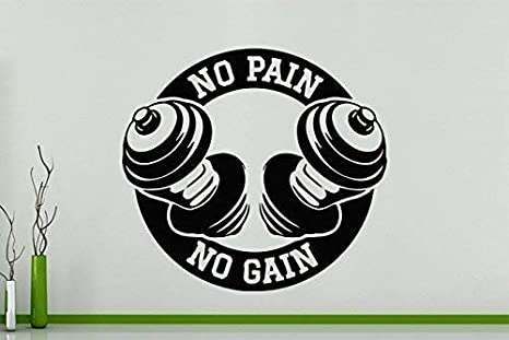 Gym No Pain No Gain Weights Fitness Exercise Wall Art Decal Sticker Picture 62 cms Wide x 56 cms high Free UK Postage