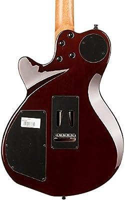 Godin edición especial palisandro xtsa guitarra eléctrica Natural ...