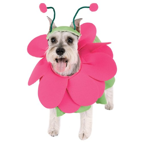 [Paper Magic Group Bloomin' Snout Pet Costume in 3 Sizes] (3 Group Costumes)