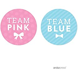 Andaz Press Team Pink Team Blue Gender Reveal, Pack of 40