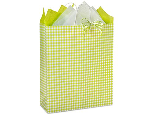 Pack Of 200, Apple Green Gingham Kraft Paper Shopping Bags W/Serrated Edge Tops & Sturdy Kraft Paper Twisted Handles - Queen 16 X 6 X 19'' Made In USA by Generic