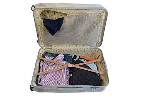 on Spinner Airplanes Cabin Carry Hard Wheels amp; Luggage A2S Suitcase Tiger Shell Bear with 55x35x22cm Durable Polar 8 Lightweight Bag vqdOxwZ
