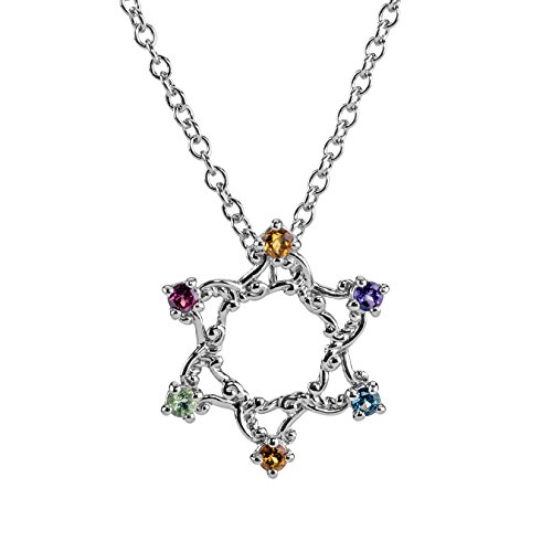 Carolyn Pollack Precious Multi Faceted Stone Star of David Necklace - Multi Stone Star