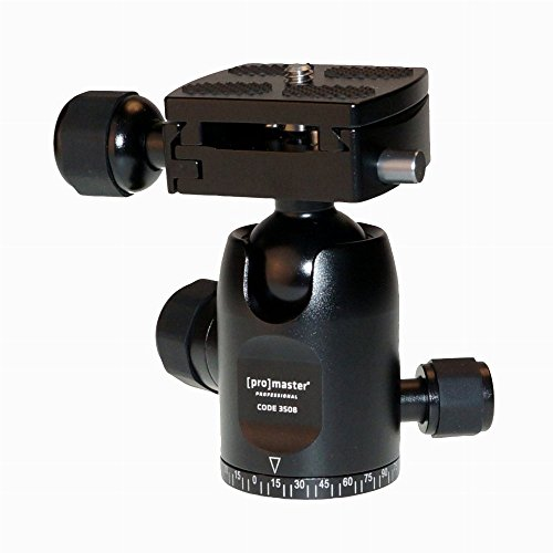 ProMaster Professional Ball Head - BS-08 (3508)