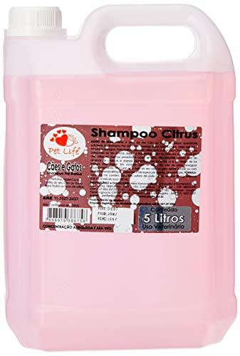 Pet Life Shampoo Citrus para Cães e Gatos, 5 Litros