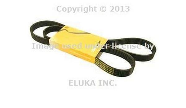 For BMW E46 E85 E86 E90 E92 E93 Z3 M3 Water Pump//Alternator Serpentine Belt