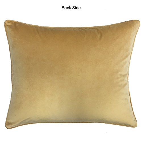 Outlet Rodeo Home Alexandra Decorative Velvet Throw Pillows For Sofa