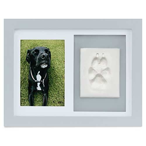 Paw Prints Keepsake Photo Frame by Better World Pets – Holds 4 x 6 inch Picture – Memorial Clay Imprint Kit – For Dogs and Cats – Perfect for Pet Lovers – Wall Mount