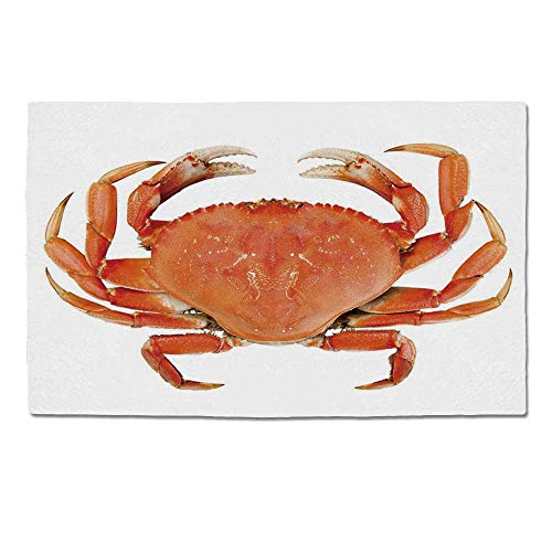 YOLIYANA Crabs Decor Durable Door Mat,Sea Animals Theme a Cooked Dungeness Crab with National Marks Digital Image for Home Office,One Size