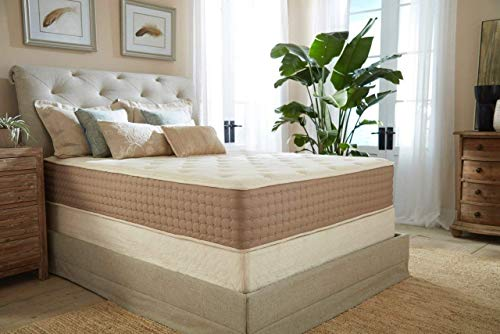 Eco Terra 11 Inch Twin XL Natural Latex Hybrid Mattress | Medium Mattress w/Encased Coil Springs