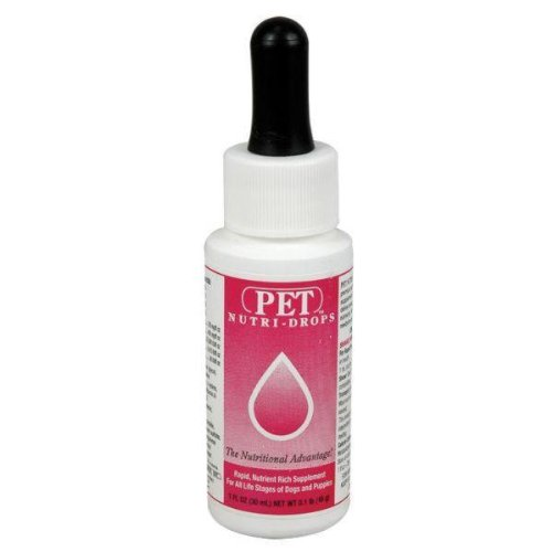 Bovidr Labs Pet Nutri-Drops - 1 oz